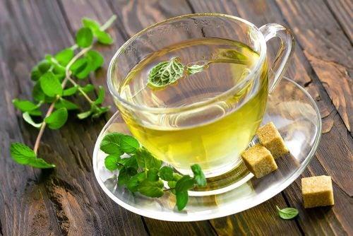 Мятный чай ускорит метаболизм