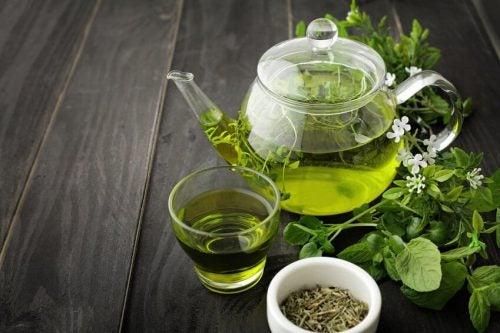 зеленый чай поможет сжигать жир