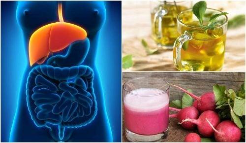 Стеатоз печени: как его лечить натуральными средствами