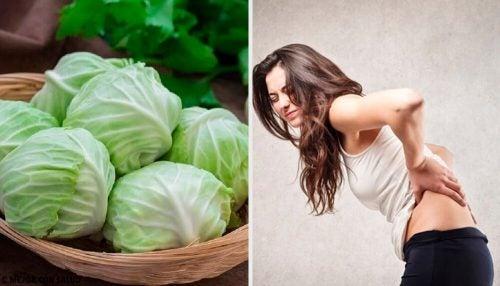 Лечение грыжи: попробуйте это средство из глины, уксуса и капустного листа