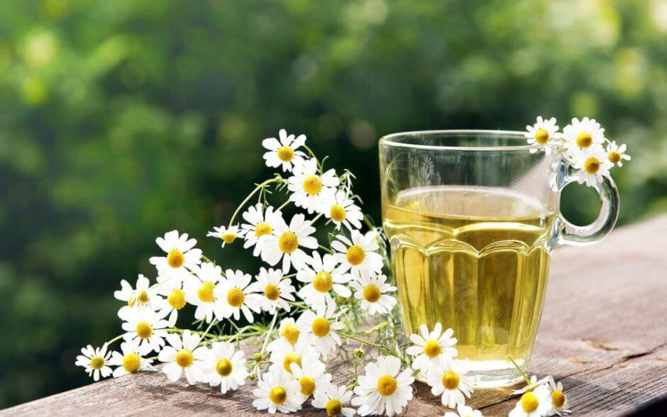 Лечебный чай из ромашки