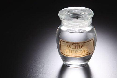 Белый уксус устранит грибок кожи головы