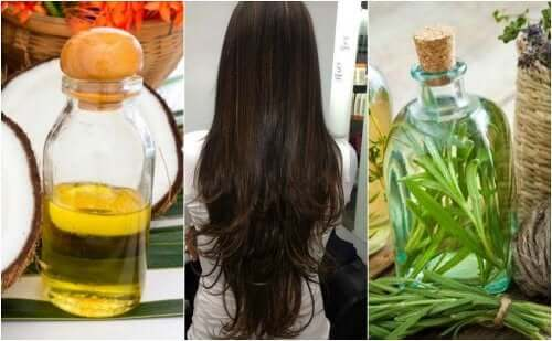 Невероятно красивые волосы: делимся 5 рецептами с розмарином!