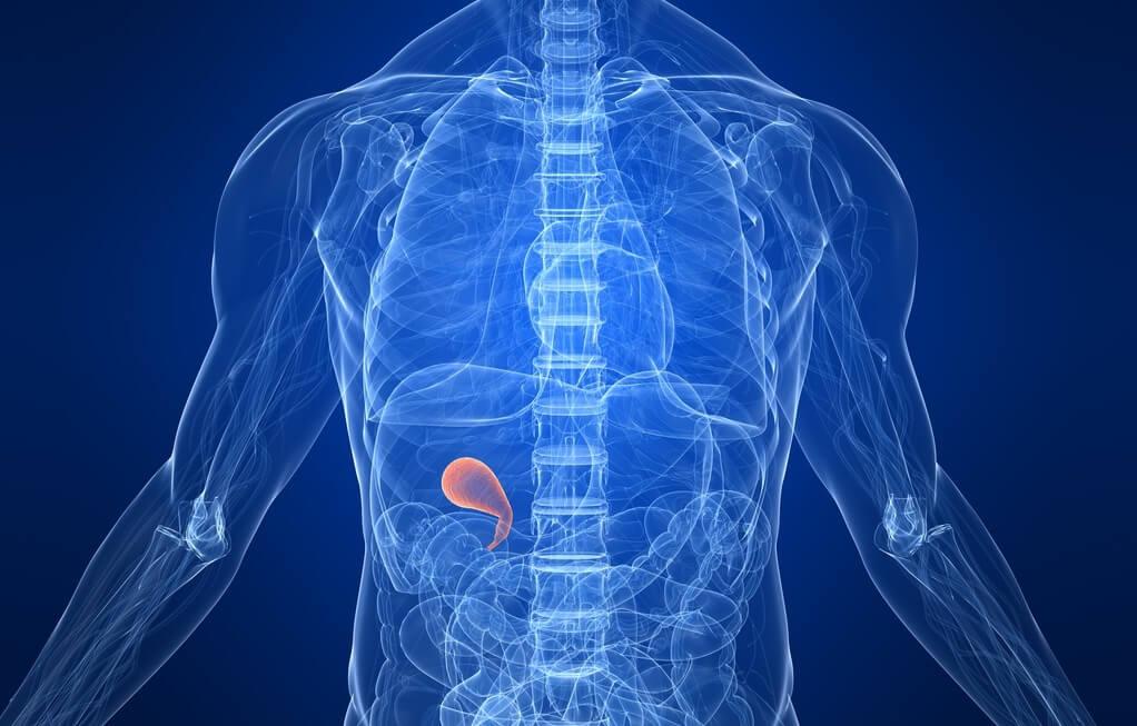 Диета после удаления желчного пузыря (холецистэктомии)