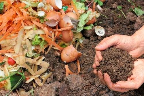 Органическое удобрение: 5 способов сделать его самостоятельно