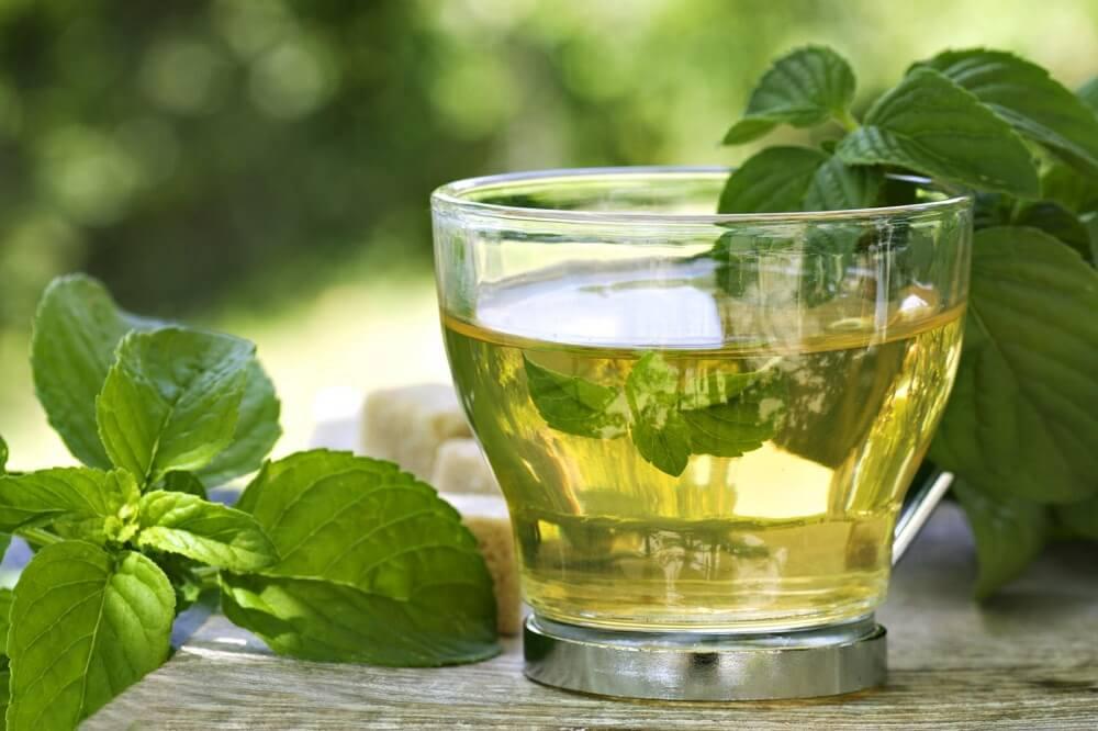 Пить зеленый чай с мятой