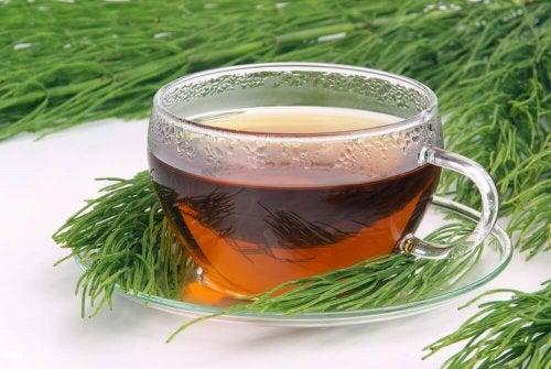 Зеленый чай с хвощом