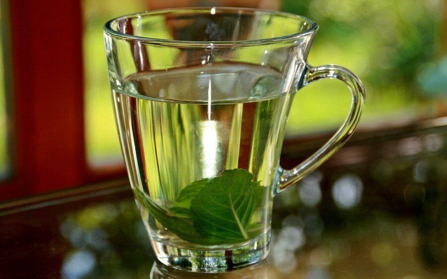 Чай с базиликом поможет сбить высокую температуру