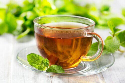 Мятный чай спасет от токсинов