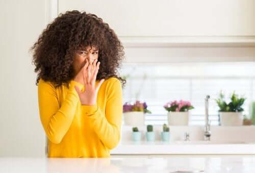 Натуральные освежители воздуха: 5 вариантов для кухни