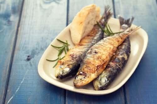 Виды рыб богатых йодом