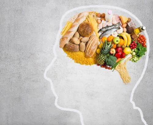 Узнайте, какой жир нужен для питания вашего мозга