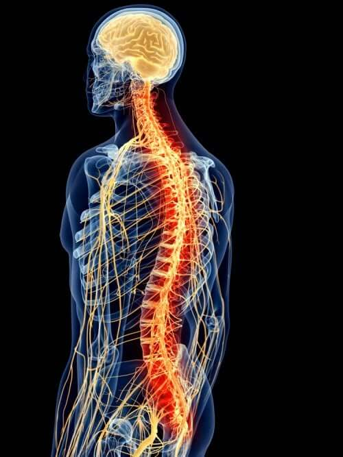Ацеклофенак и боль в спине