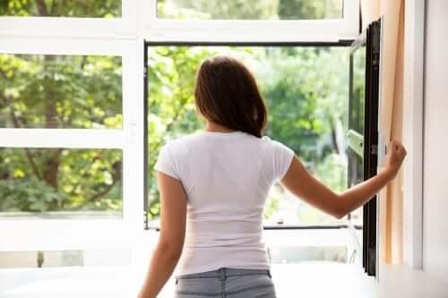7 советов, как можно очистить воздух дома