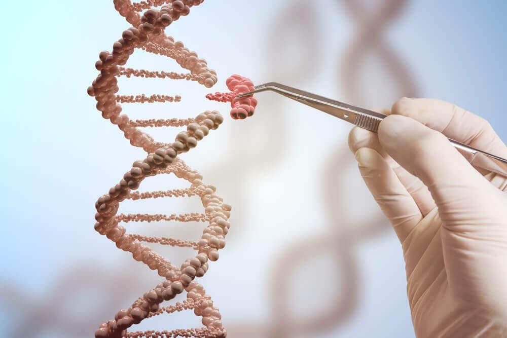 Генетическая мутация и днк