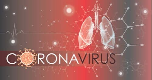 Как коронавирус поражает клетки легких?