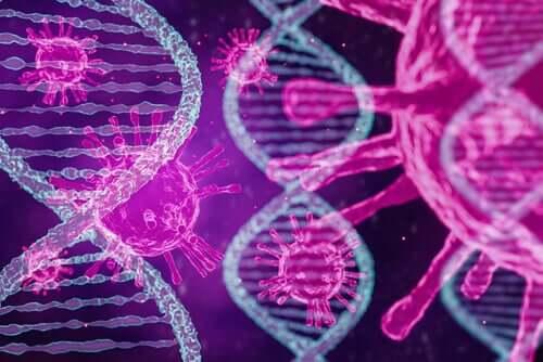 Есть три типа коронавируса в мире, согласно исследованию